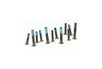 ICS M4 screw / schroeven Set